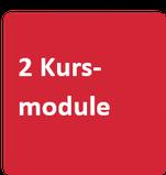 """roter Würfel mit Aufschrift """"2 Kursmodule"""""""